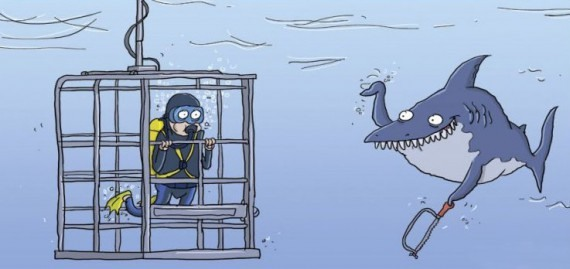 Funny picture  about shark black
